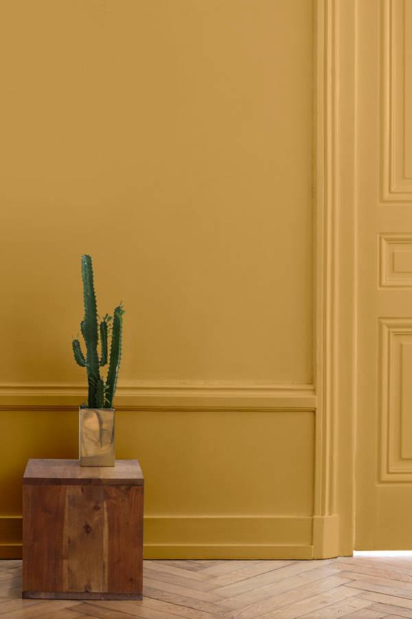 peinture-murale-velours-de-peinture-couleur-jaune-calisson-inspiration